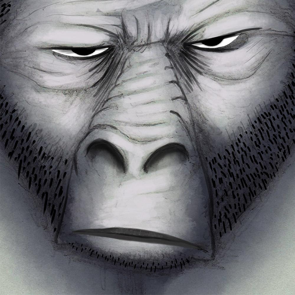 Illustration von einen Affen